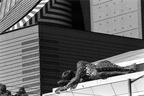 Rooftop Sculture of Woman (105160-10)