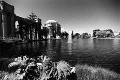 Palace of Fine Arts (105100-16)