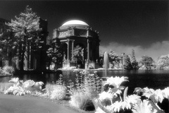 Palace of Fine Arts (infrared) (105040-7)