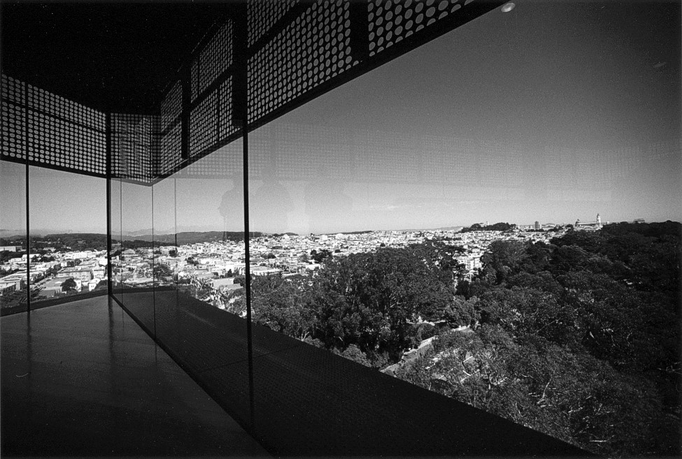 View from the de Young Museum Tower (105150-1)